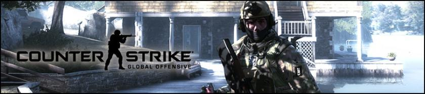 Counter-Strike:Global Offensive Turnering